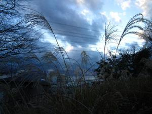 2010_12_9_003